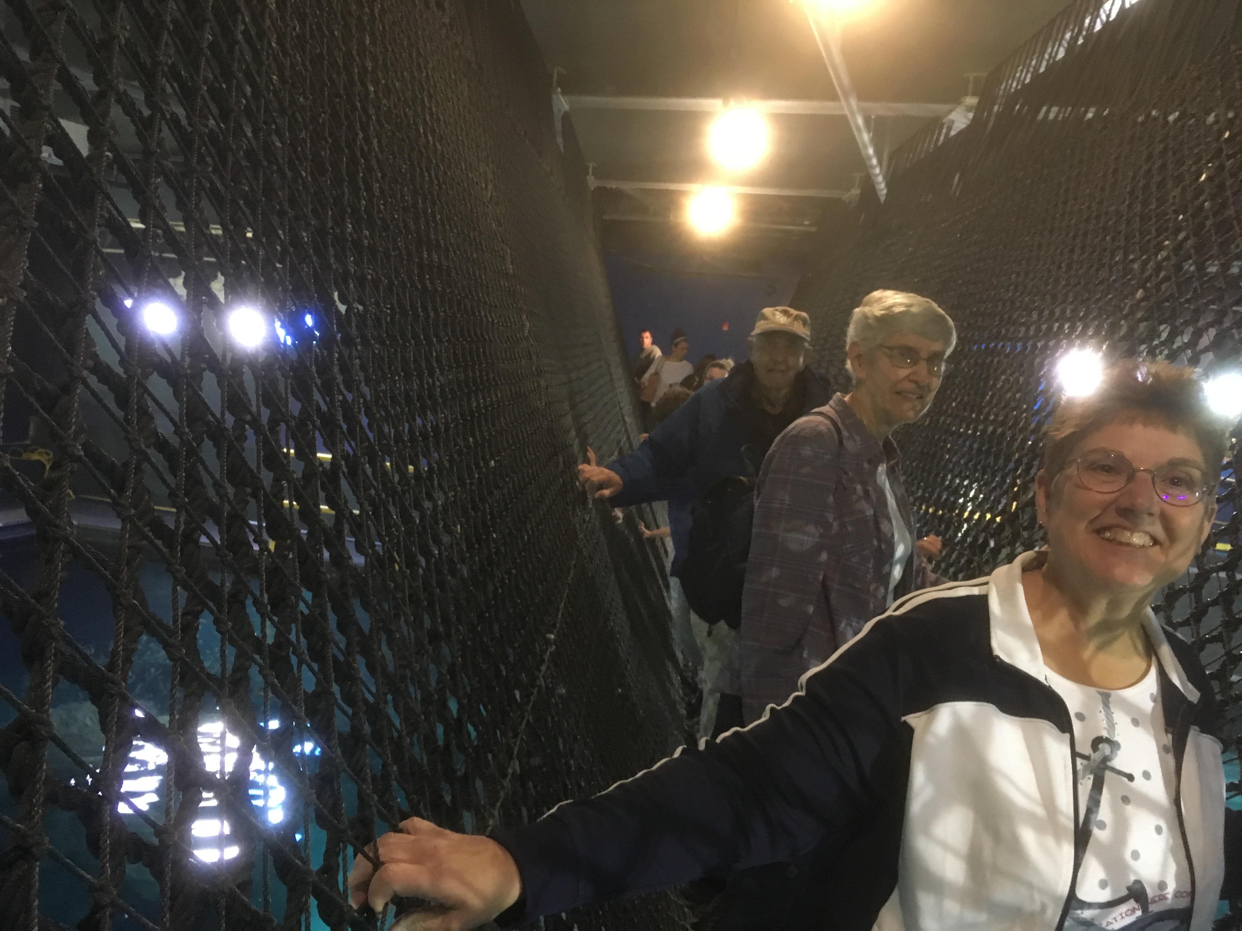 Camden Aquarium 2